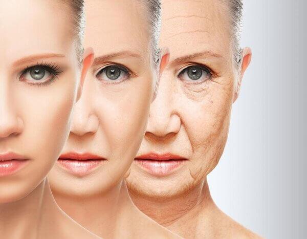 Lão hóa da là gì? Nguyên nhân, dấu hiệu và cách ngăn ngừa lão hóa da